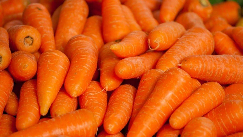 איך לבצע הזמנה של ירקות טריים למטבח שלכם